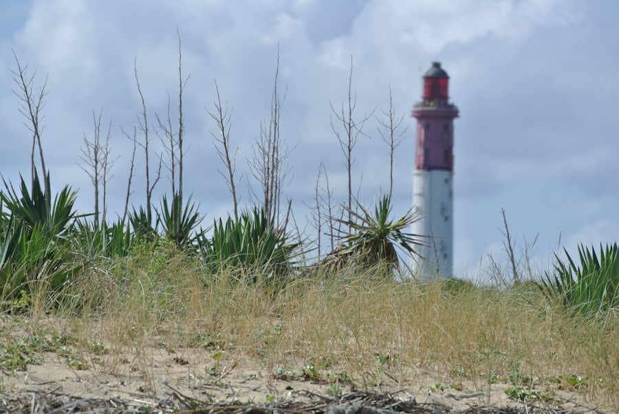 Expert immobilier au Cap Ferret